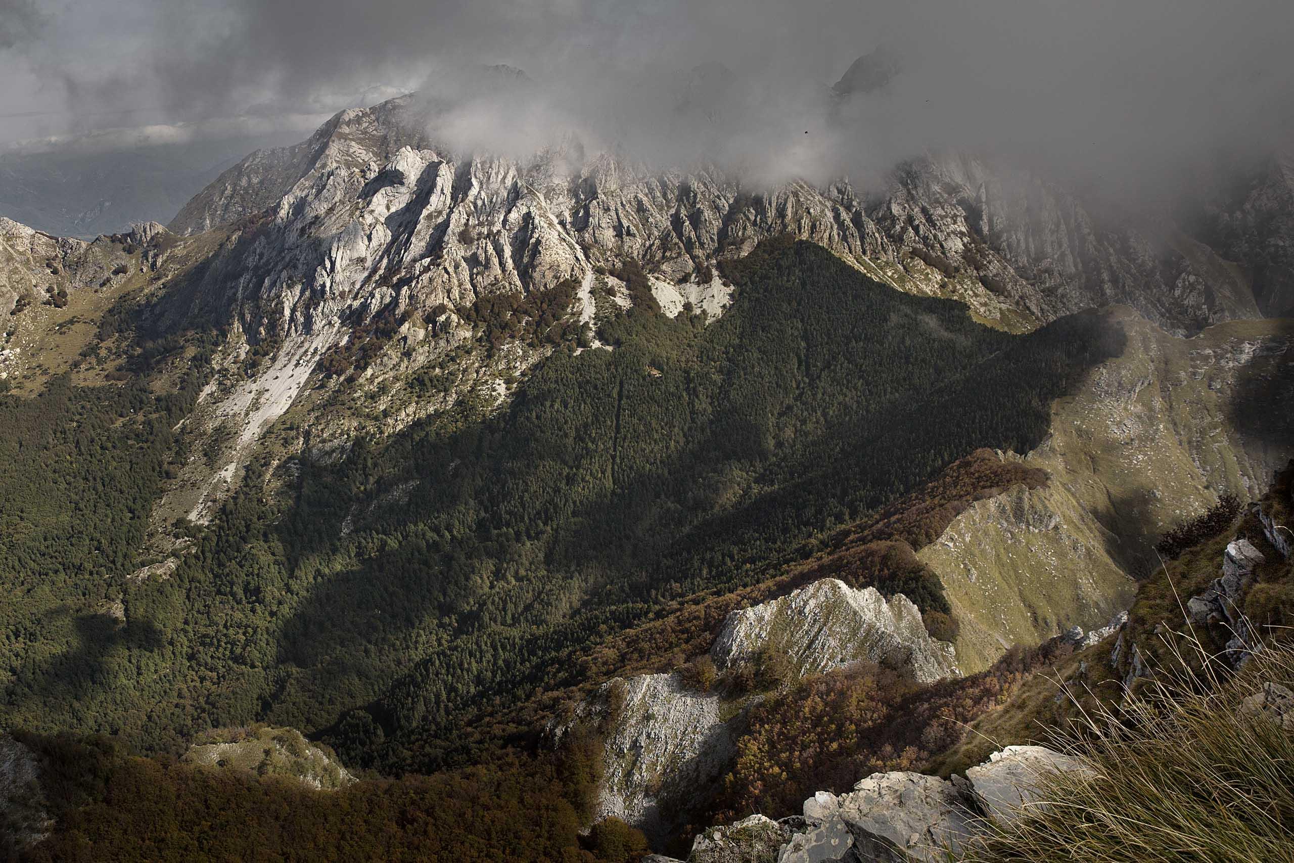 Workshop nel parco delle Alpi Apuane