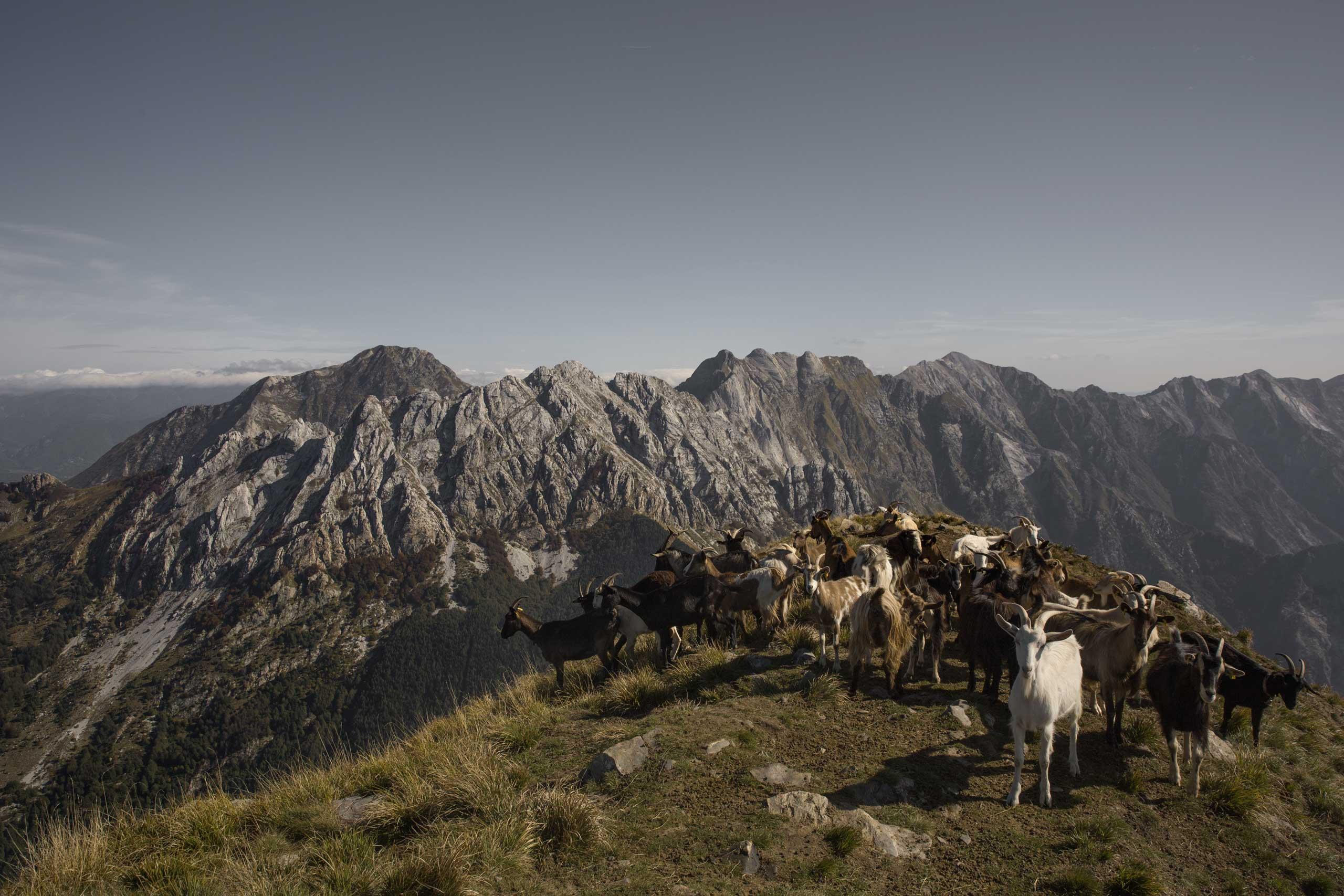 Alpi Apuane: a spasso tra la terra e il mare