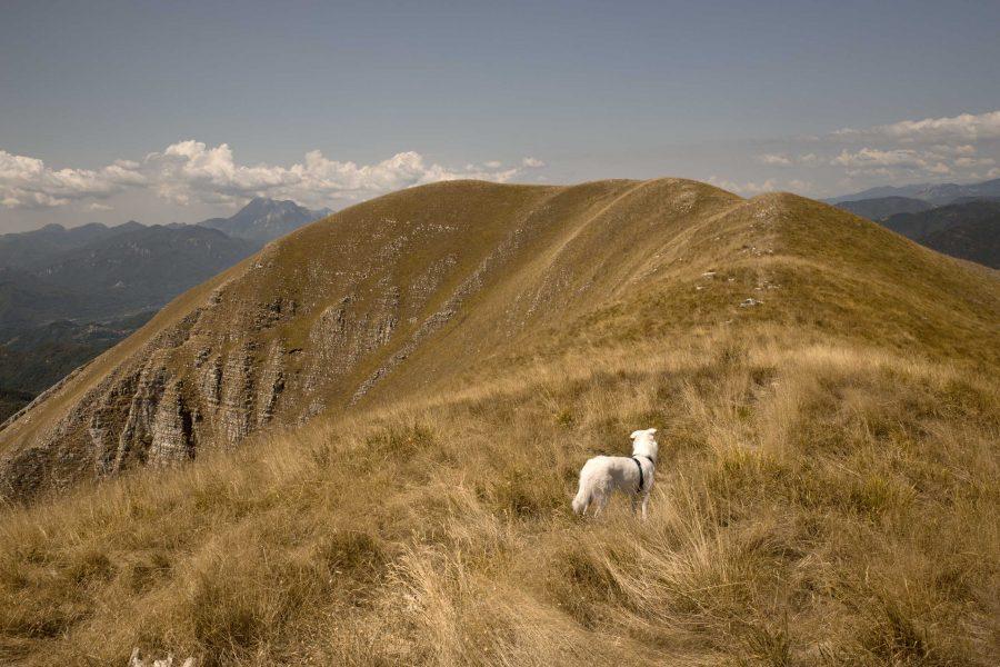 Prato Fiorito: trekking sull'Alta via Dei Pastori