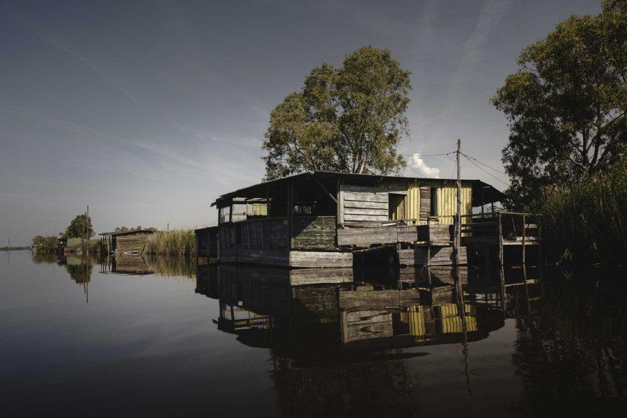 Escursione fotografica sul Lago di Massaciuccoli