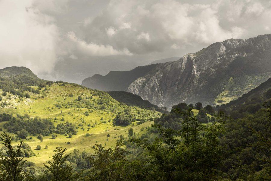 I prati dell'Alpe di Borla